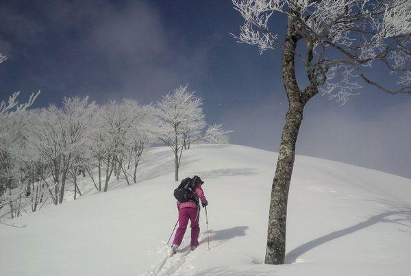 関田山脈バックカントリーレポート