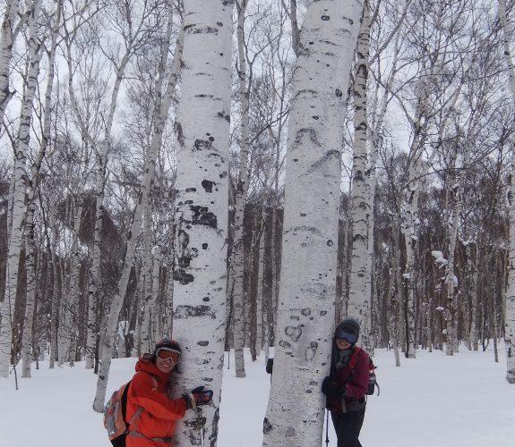 ニセコワイスホルン 山スキーレポート